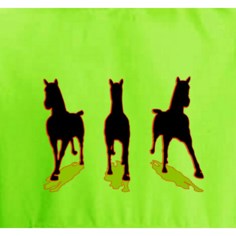 3 Running Horses Hoo...