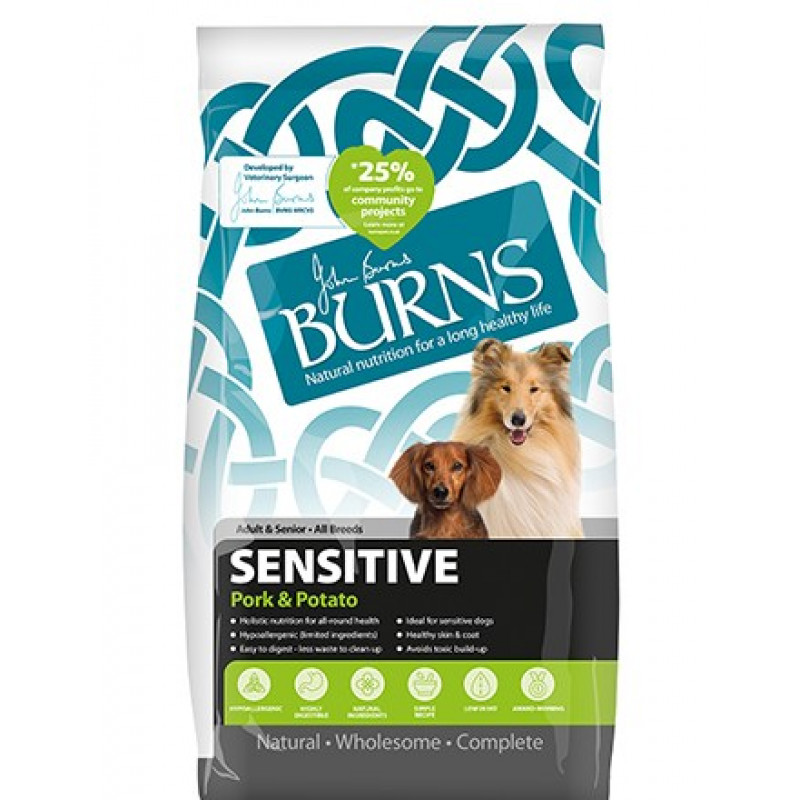 Burns Sensitive Dog ...