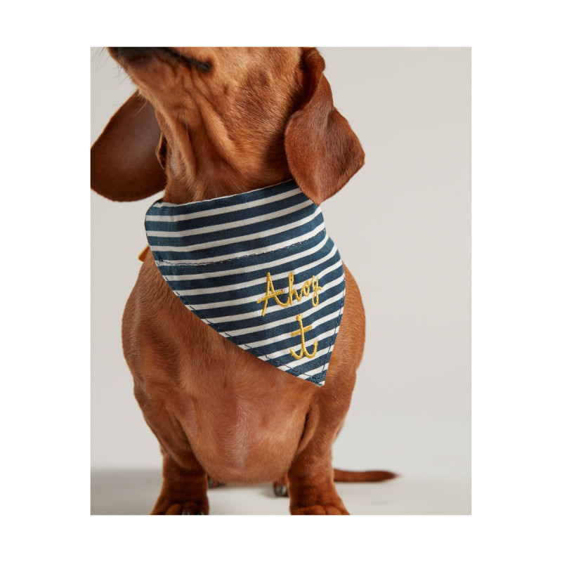 Joules Nautical Coll...