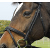 Heritage English Leather Bridle With Flash Noseband