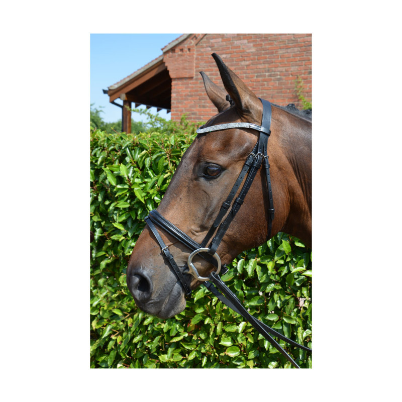 Hy Diamond Flash Bridle w...