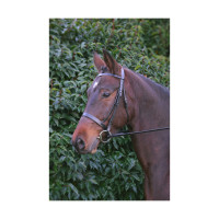 Hy Hunter Bridle with Rub...
