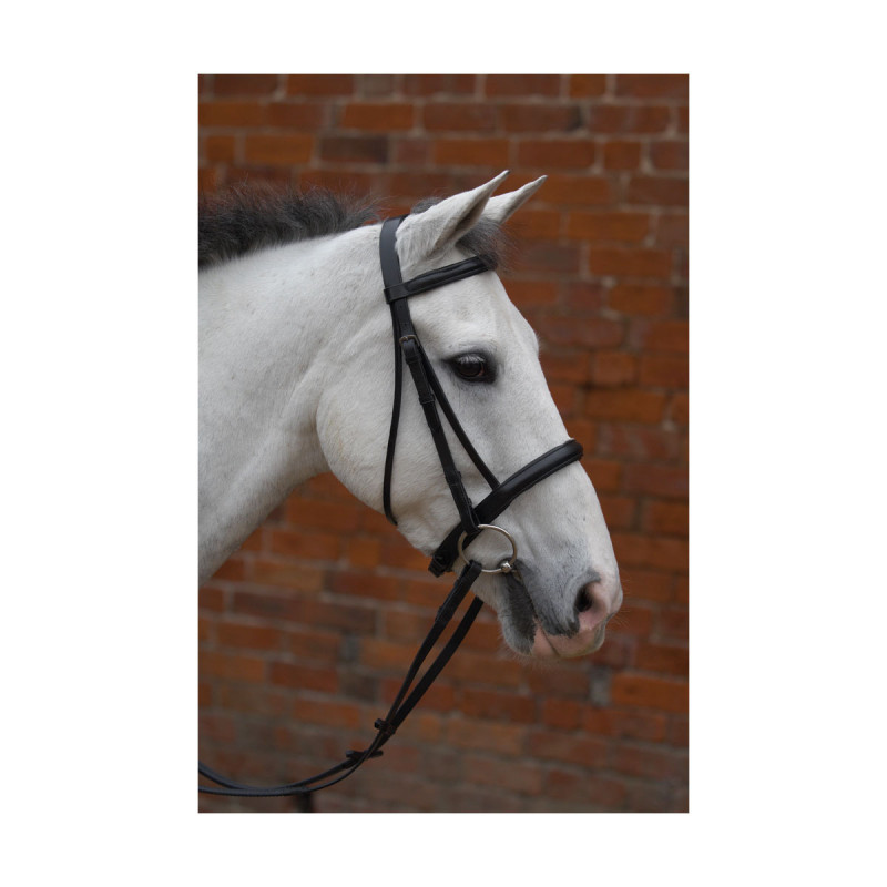 Hy Padded Cavesson Bridle...