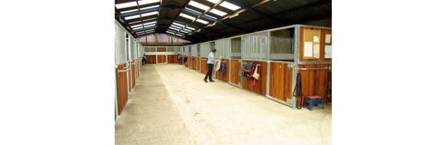 Arena, Stable, Yard & Field