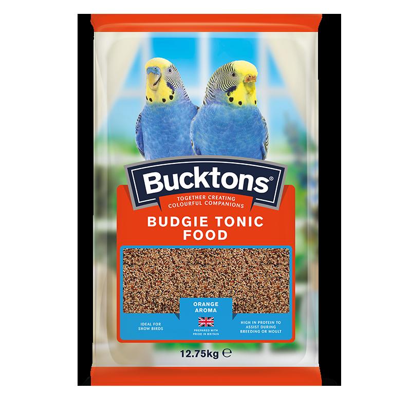 Bucktons Budgie Toni...
